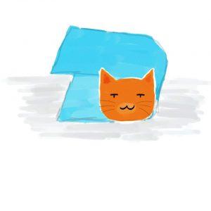 วิธีจับแมวโดยใช้ผ้าขนหนู1