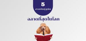 สายพันธุ์สุนัขฉลาดที่สุดในโลก